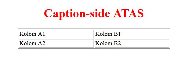 Cara menggunakan property caption side pada css kursus for Table caption css