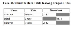 cara membuat kolom table kosong dengan css3