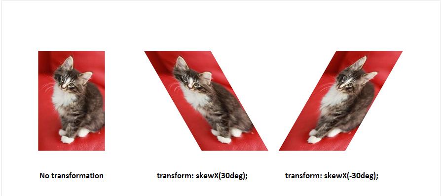 fungsi skewx()