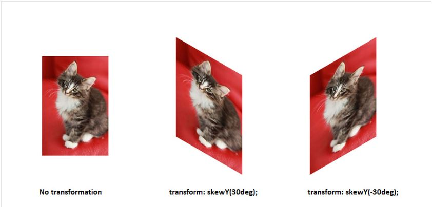 Fungsi skewy() Pada Transform 2d Dalam CSS