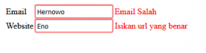 Cara Membuat Validasi Form Input Dengan Angularjs