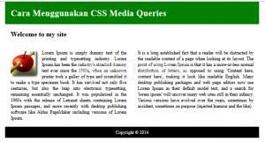 Cara Menggunakan CSS Media Queries