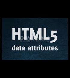 Cara Menggunakan Attribute Pattern Di Input HTML