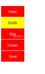 Cara Membuat Menu Vertikal dengan HTML CSS