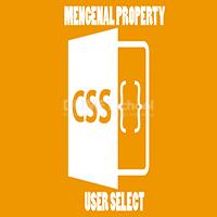 Mengenal Property user-select pada CSS