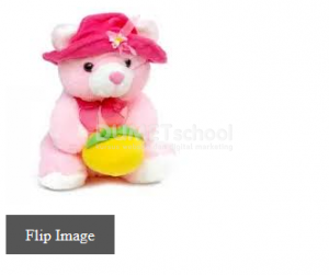 Cara Membuat Image Flip dengan jQuery CSS