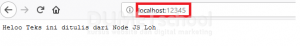 cara menjalankan server basic menggunakan Node.js