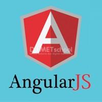 Cara Menggunakan Ng-Show Pada AngularJs