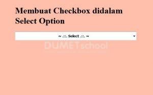 1-Membuat Checkbox didalam Select Option
