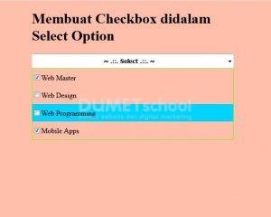 2-Membuat Checkbox didalam Select Option