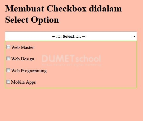 Cara Membuat Checkbox didalam Select Option