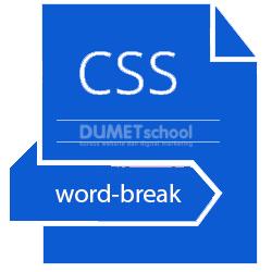 Cara Menggunakan Word-Break Property CSS