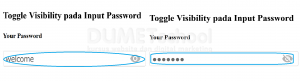 Cara Menggunakan Toggle Visibility pada Input Password