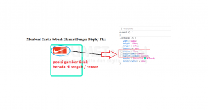 1-Membuat Center Sebuah Element Dengan Display Flex