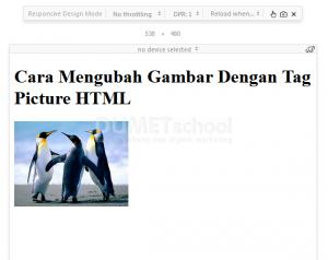 Cara Mengubah Gambar Dengan Tag Picture HTML
