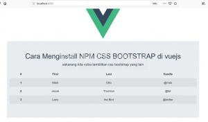 cara menginstall npm css Bootstrap di vuejs