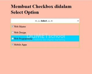 2-Membuat Checkbox didalam Select Option