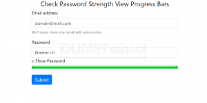 Check Password Strength View Progress Bars