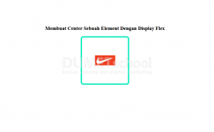 Membuat Center Sebuah Element Dengan Display Flex