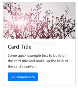 cara membuat sebuah card di bootstrap vue